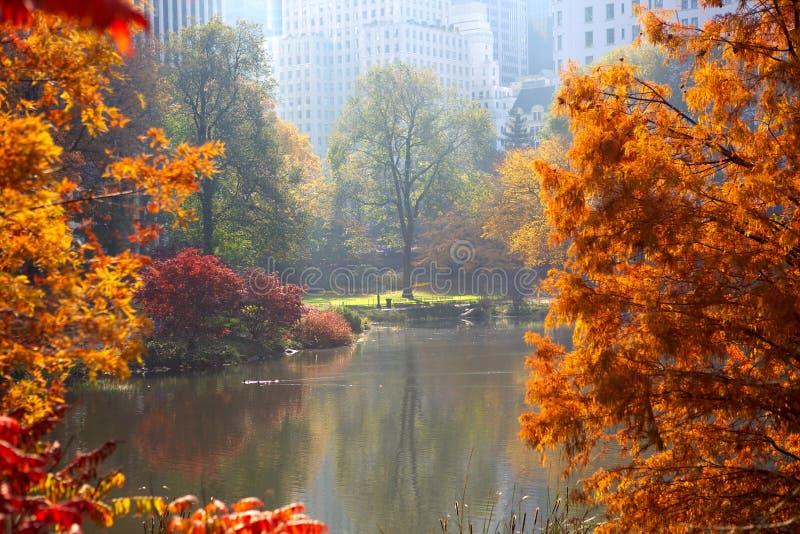 秋天在中央公园 免版税库存照片