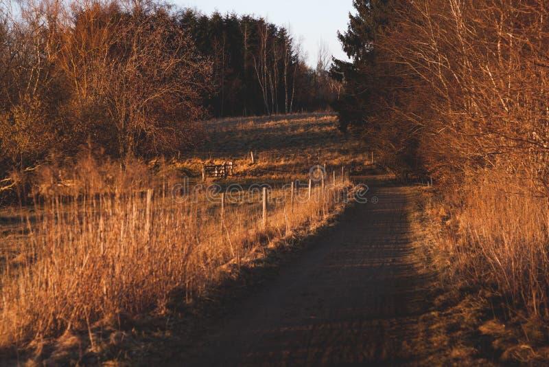 秋天在丹麦,乡下公路 库存图片