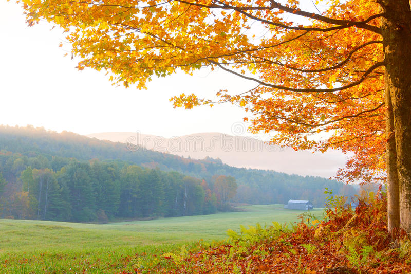 秋天在佛蒙特 免版税库存照片