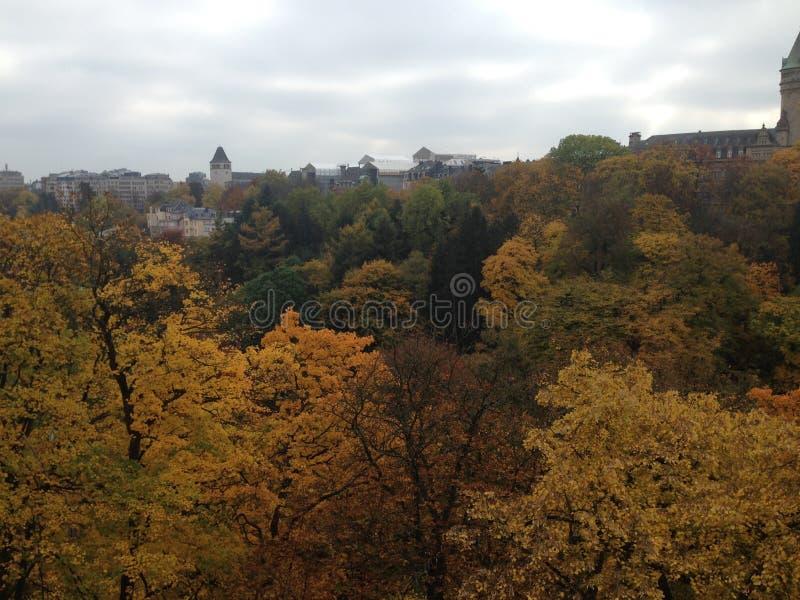 秋天在卢森堡的中心 库存照片