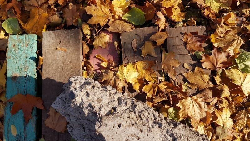 秋天在困厄的木板条的叶子堆 库存图片