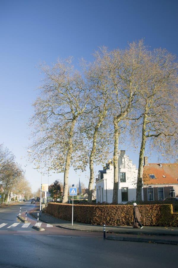 秋天在奈凯尔克荷兰镇  免版税库存照片