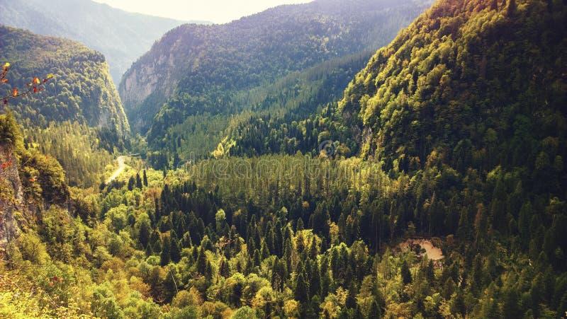 秋天在山峡谷 库存照片