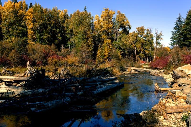 秋天在山的河风景 免版税图库摄影