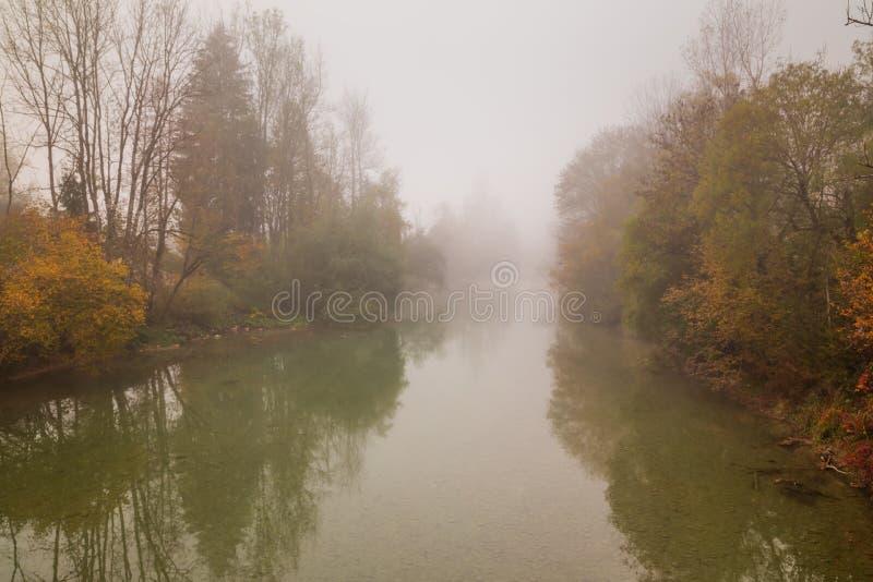 秋天在有雾的有薄雾的河的秋天风景 库存照片