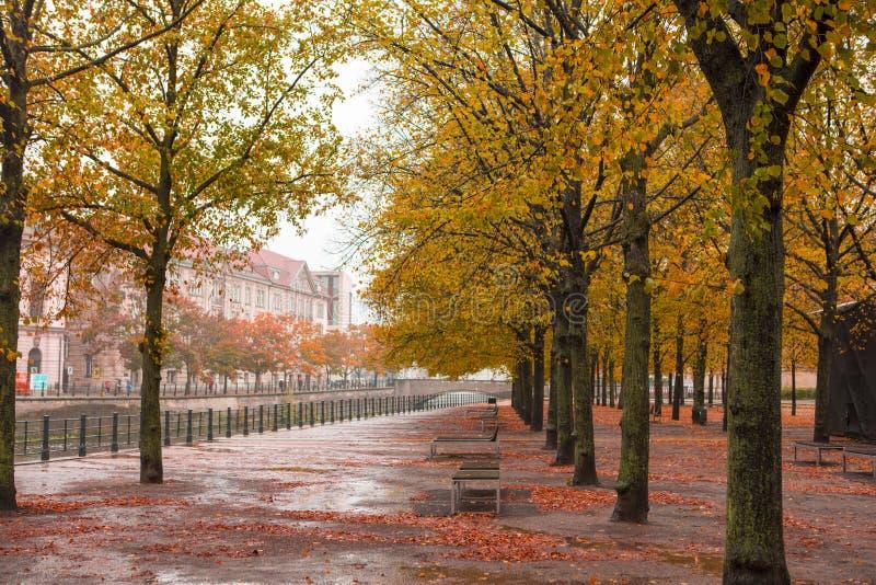 秋天在柏林,德国Unter小室菩提树运河美丽的槭树 图库摄影