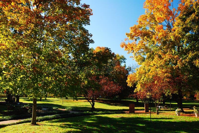 秋天在树木园 免版税库存照片