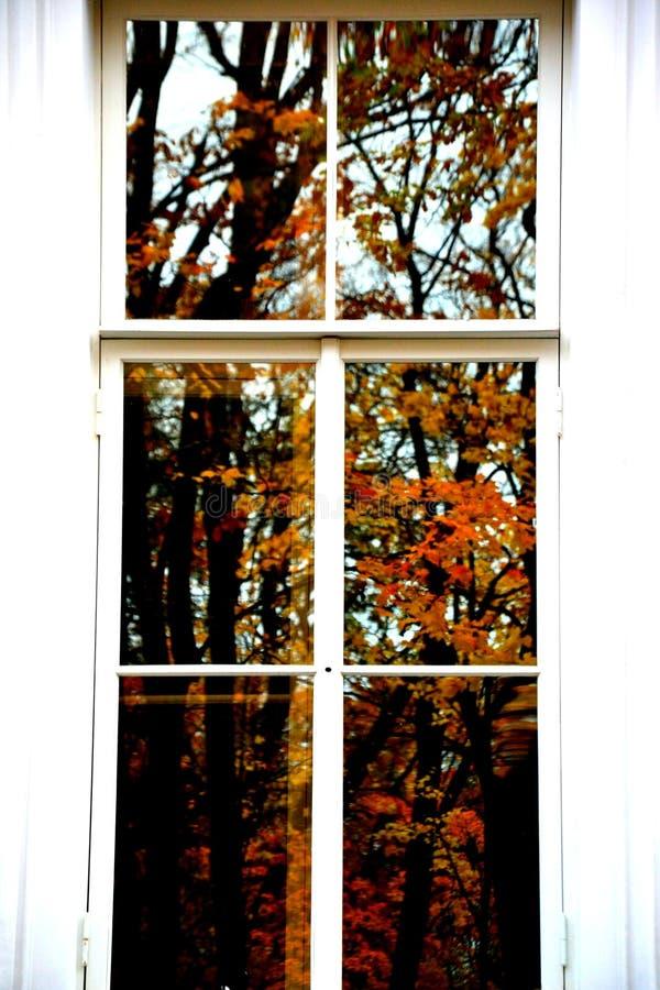 秋天在窗口里 库存照片