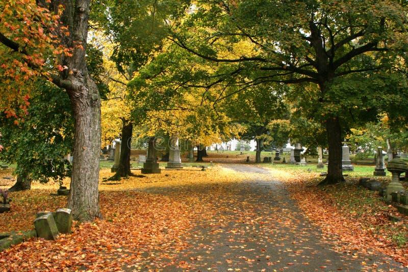秋天在纳稀威 图库摄影