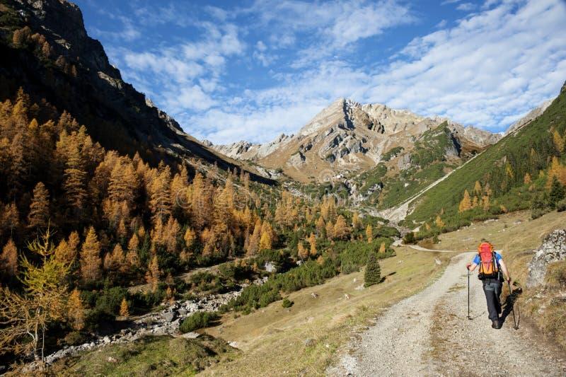 秋天在阿尔卑斯 免版税库存图片
