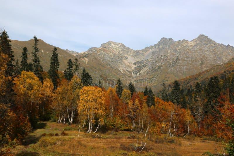 秋天在高加索山脉 库存照片