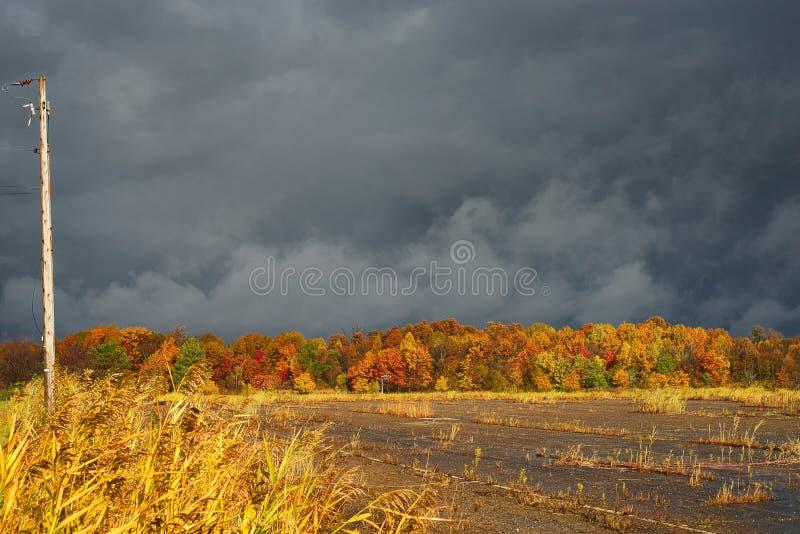 秋天在黑暗的天空下 库存照片