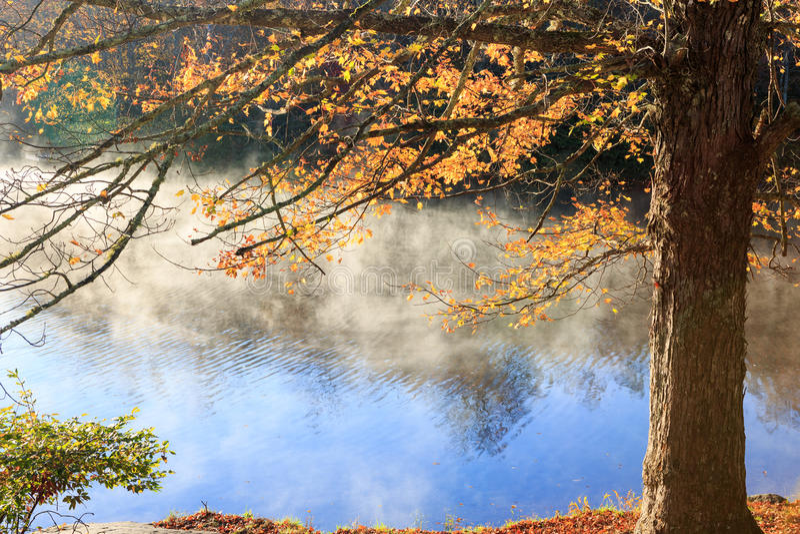 秋天在水的背景雾 免版税库存照片