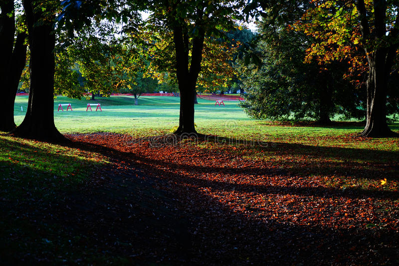 秋天在Hagley公园,克赖斯特切奇,新西兰 免版税库存照片
