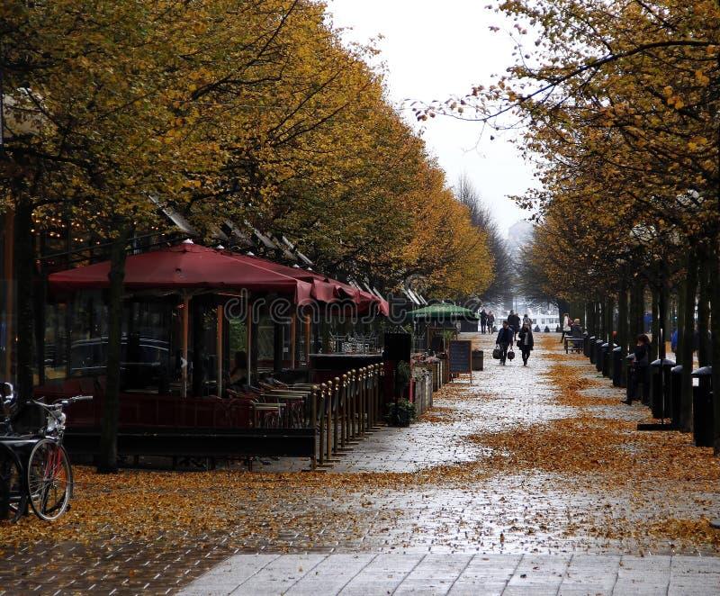 秋天在Kungstradgarden公园 斯德哥尔摩 瑞典 免版税库存图片