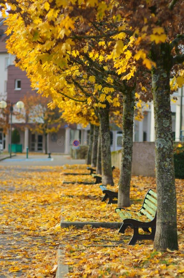 秋天场面在镇里 免版税库存图片
