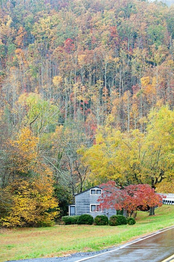 秋天多雨北部卡罗来纳州的日 库存图片