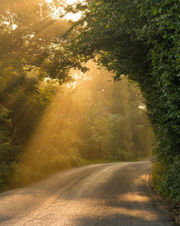 秋天太阳光芒在高峰区 免版税库存图片