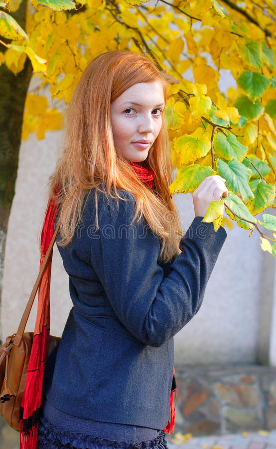 秋天女孩头发的纵向红色 免版税库存照片