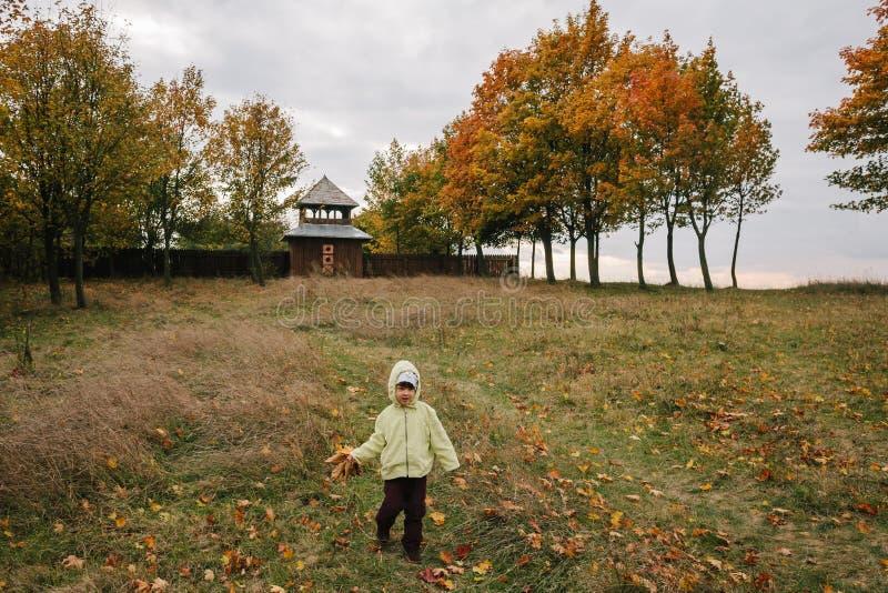 秋天女孩少许公园 叶子花束  城堡 f 免版税库存图片