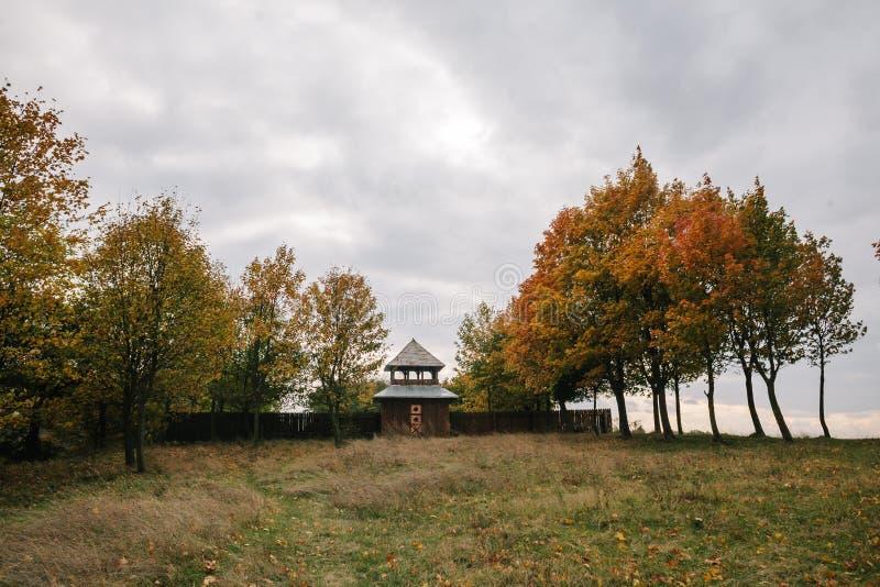 秋天女孩少许公园 叶子花束  城堡 f 免版税库存照片