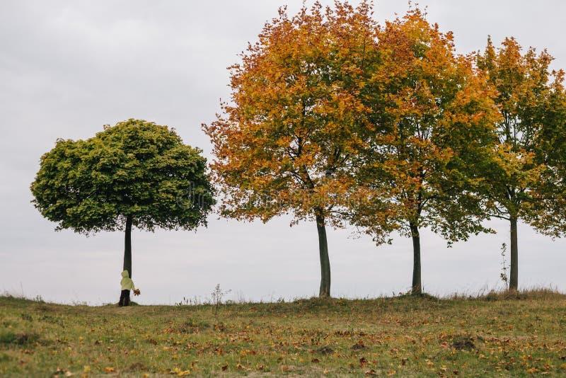秋天女孩少许公园 在结构树下 库存图片