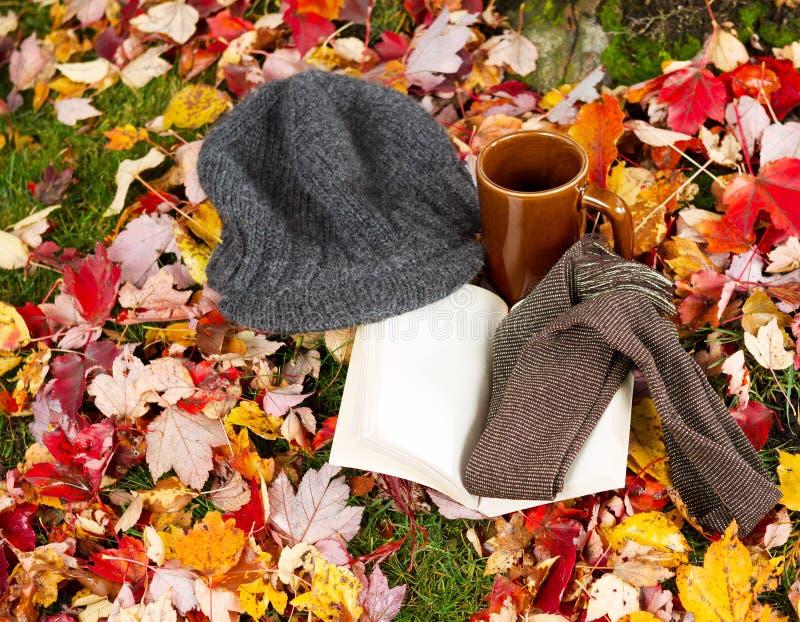 秋天季节的读物 库存图片