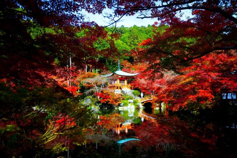 秋天季节,红色的事假变动颜色 免版税库存照片