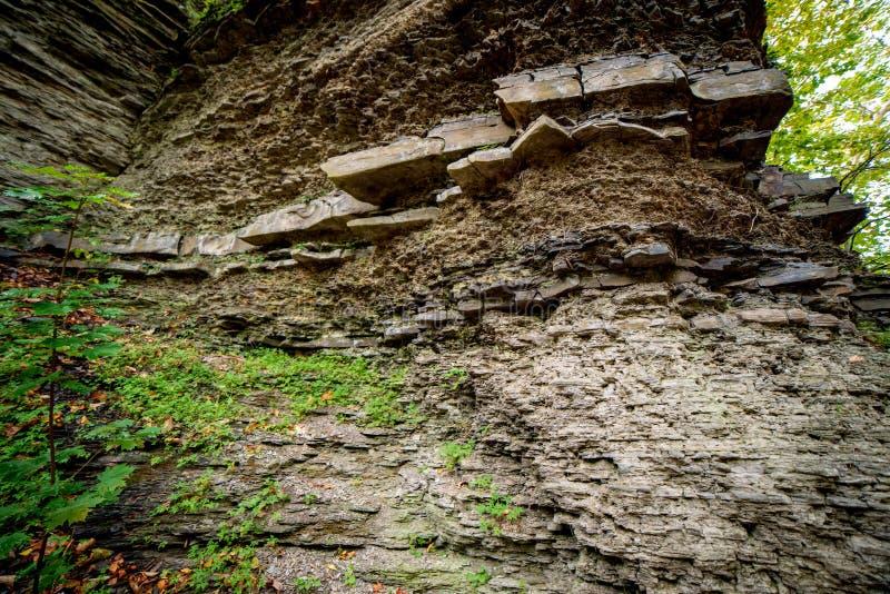 秋天小河被腐蚀的银行显示土壤层数 图库摄影