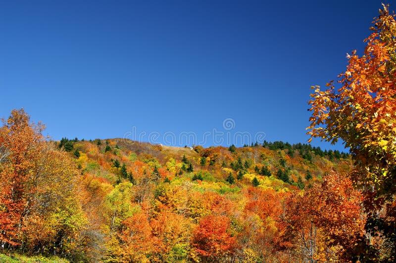 秋天山坡西方水平的弗吉尼亚 免版税图库摄影