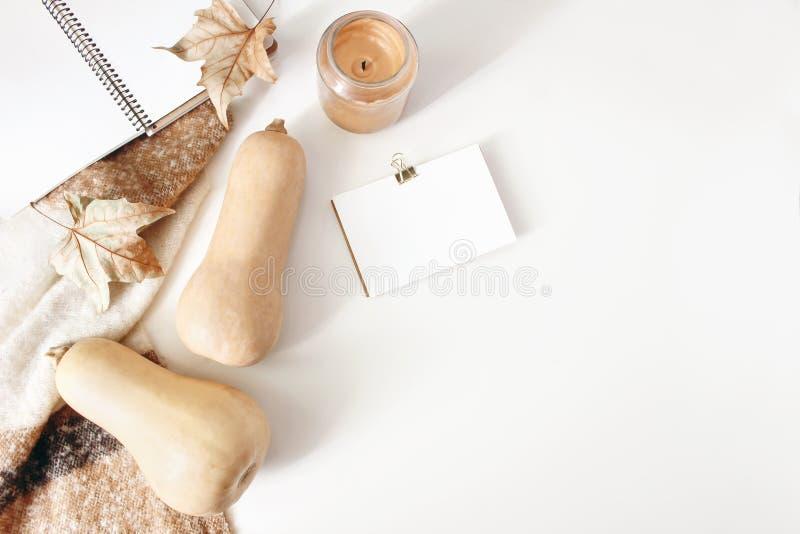 秋天工作区静物画 笔记本和businness卡片与羊毛毯子、秋叶和南瓜的大模型场面 免版税图库摄影