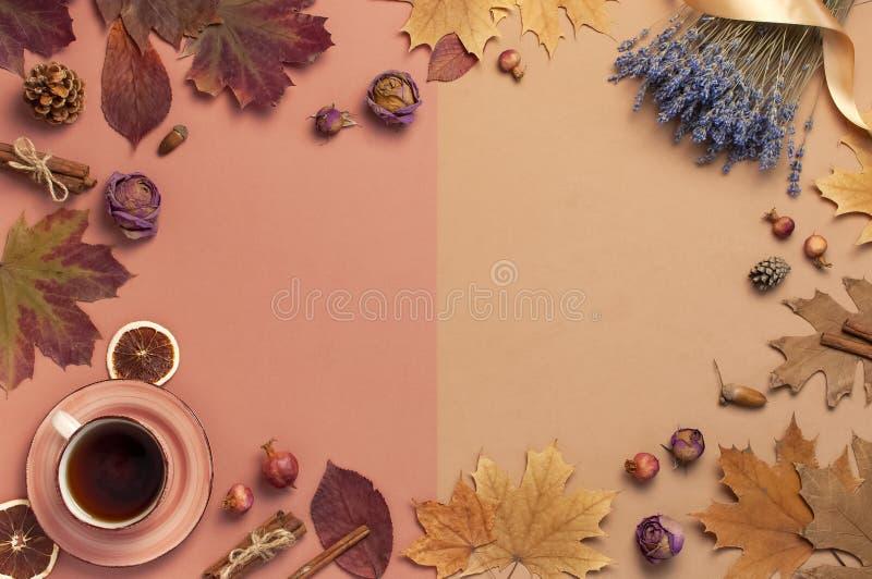 秋天平的被放置的构成 茶,秋天干燥叶子,玫瑰花,淡紫色,橙色圈子锥体装饰石榴 免版税库存照片