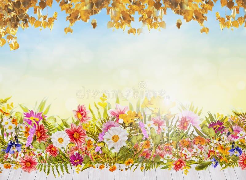 秋天开花与白色木大阳台、蓝天和金黄叶子的背景 免版税库存图片