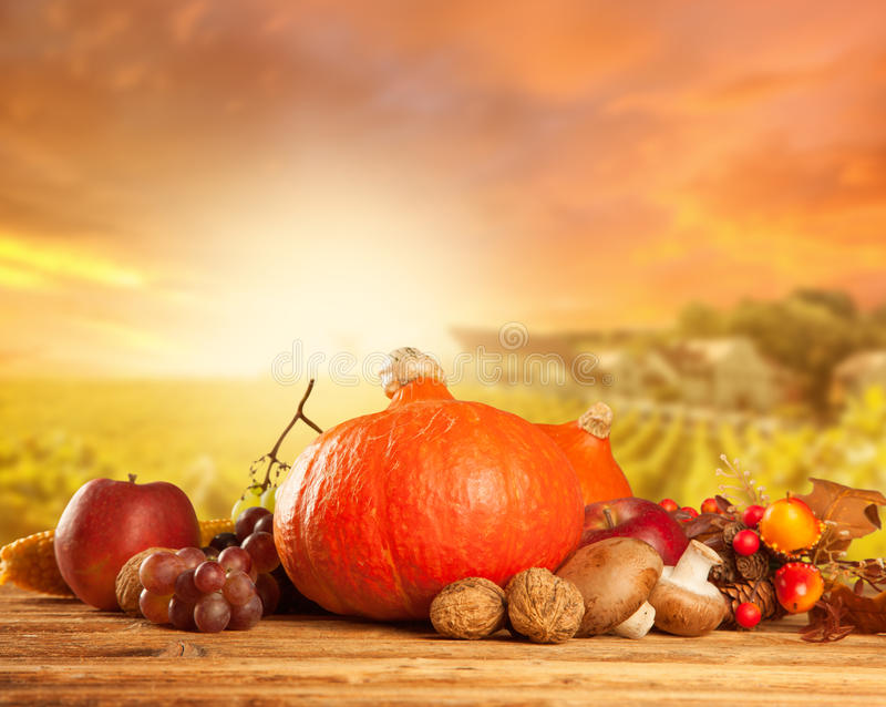 秋天收获了水果和蔬菜在木头 免版税库存图片