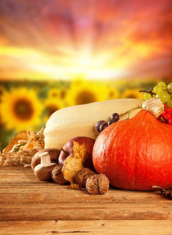 秋天收获了水果和蔬菜在木头 库存照片