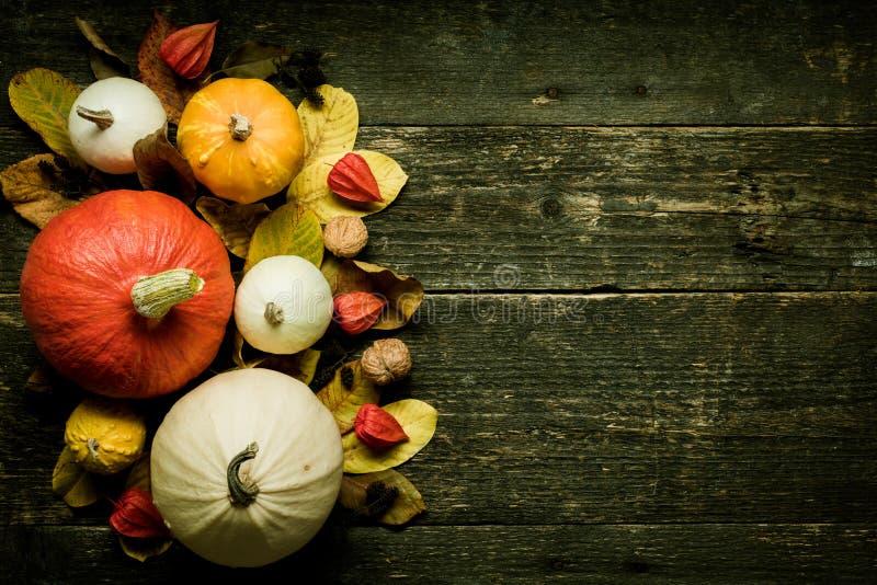 秋天收获和假日静物画 背景愉快的感恩 各种各样的南瓜的选择在黑暗的木背景的 库存图片