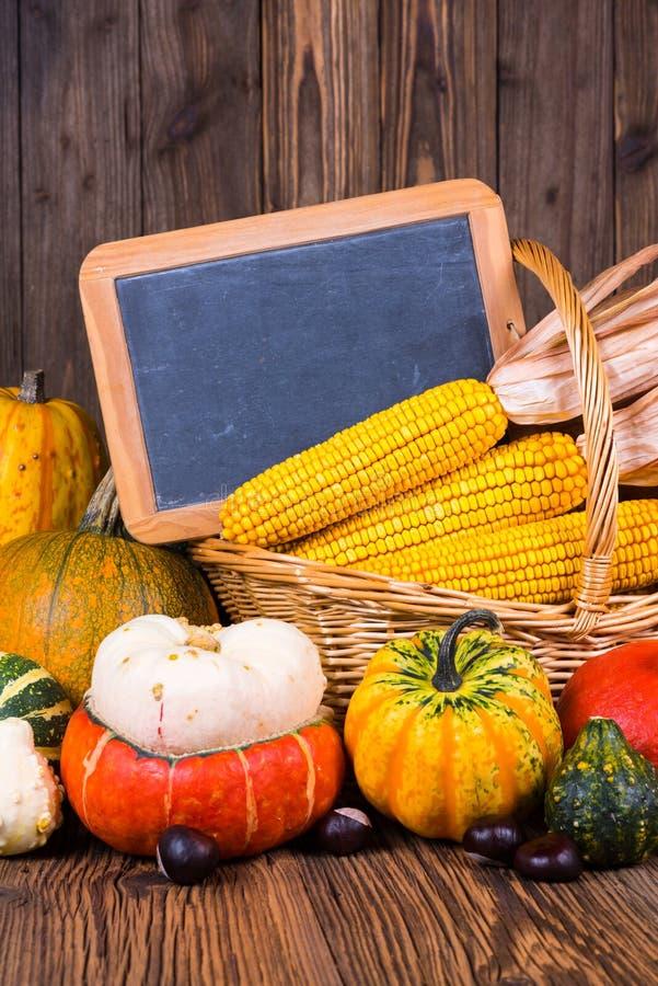 秋天收获节日动机用在一个篮子前面的各种各样的南瓜与在土气木背景的玉米棒子 库存照片