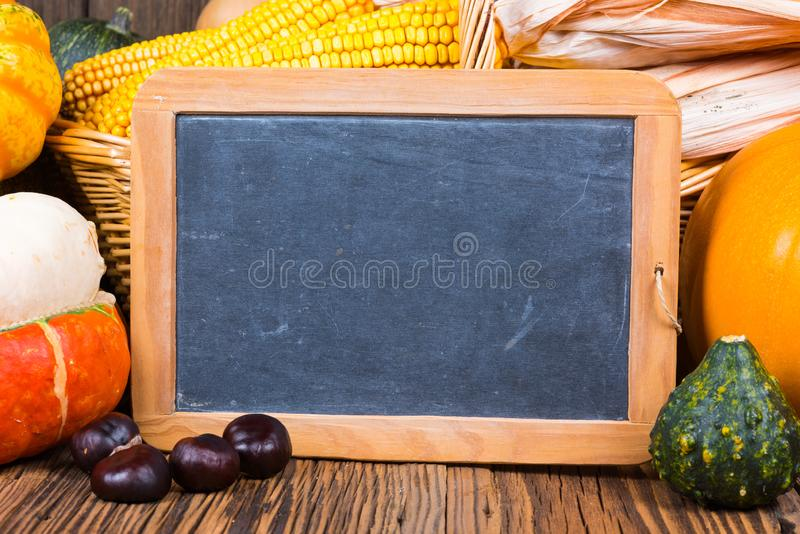 秋天收获节日动机用在一个篮子前面的各种各样的南瓜与在土气木背景的玉米棒子 免版税库存图片