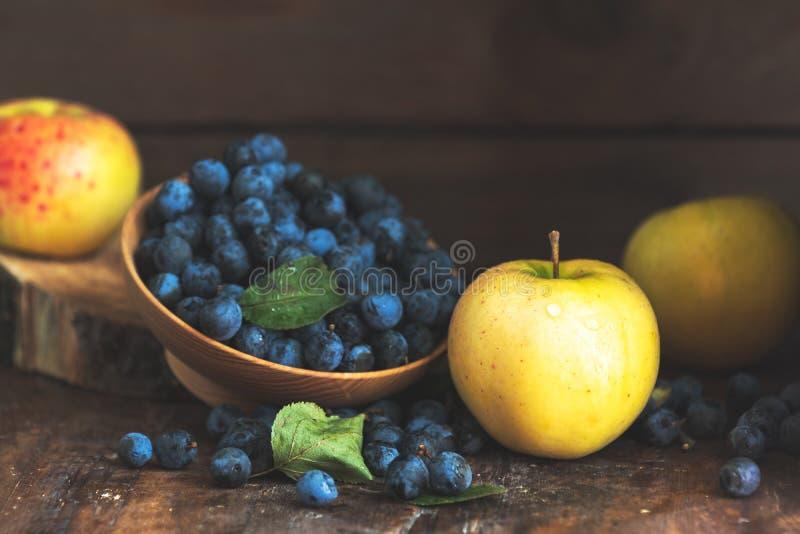 秋天收获蓝色黑刺李莓果和苹果在木桌ba 免版税库存照片
