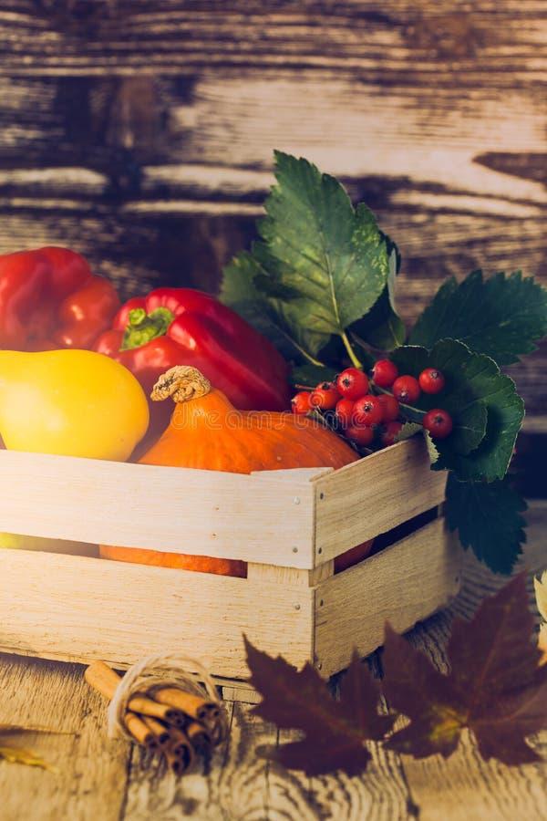 秋天收获装饰 笋瓜和vegetab静物画  免版税图库摄影
