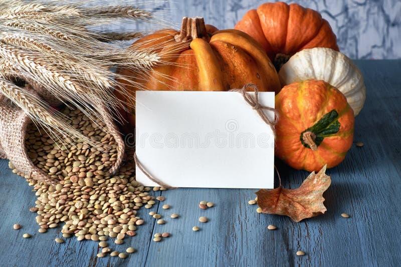 秋天收获静物画用南瓜、麦子耳朵和扁豆, 免版税库存图片