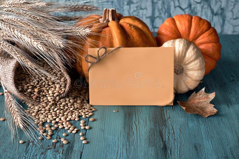 秋天收获静物画用南瓜、麦子耳朵和扁豆, 免版税库存照片