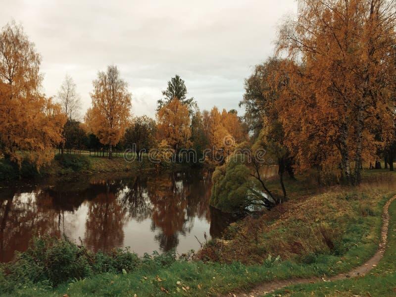 秋天散步在有河的公园 免版税库存照片