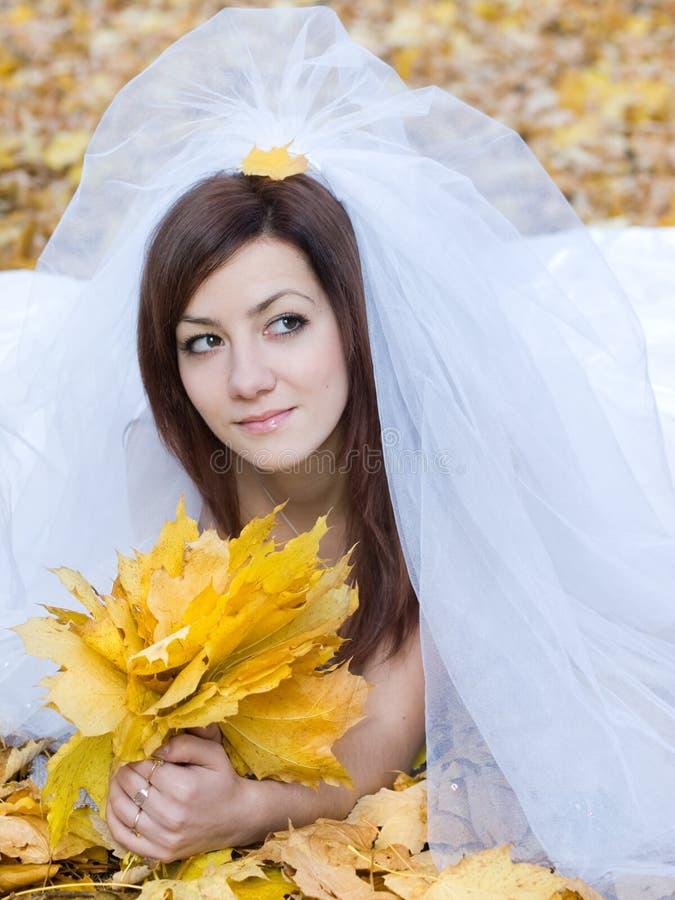 秋天新娘 库存图片