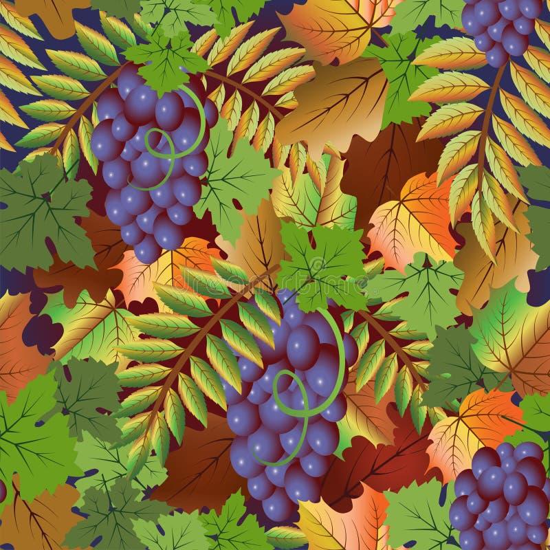 秋天无缝的卡片用葡萄果子,传染媒介 向量例证