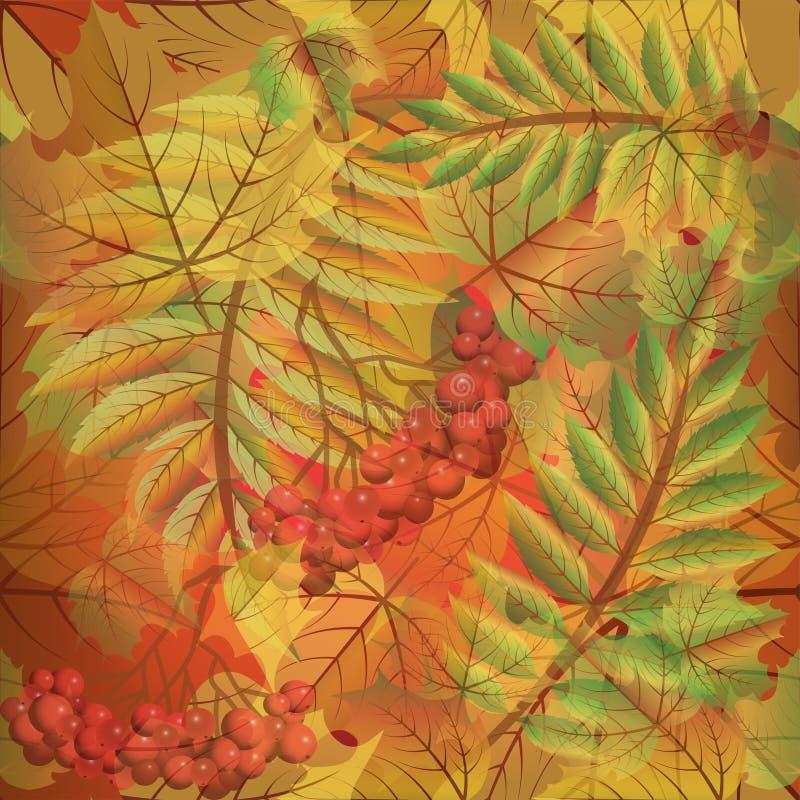 秋天无缝的背景用花楸浆果 皇族释放例证