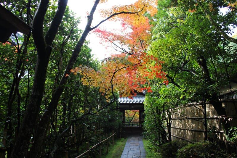 秋天日本 免版税图库摄影