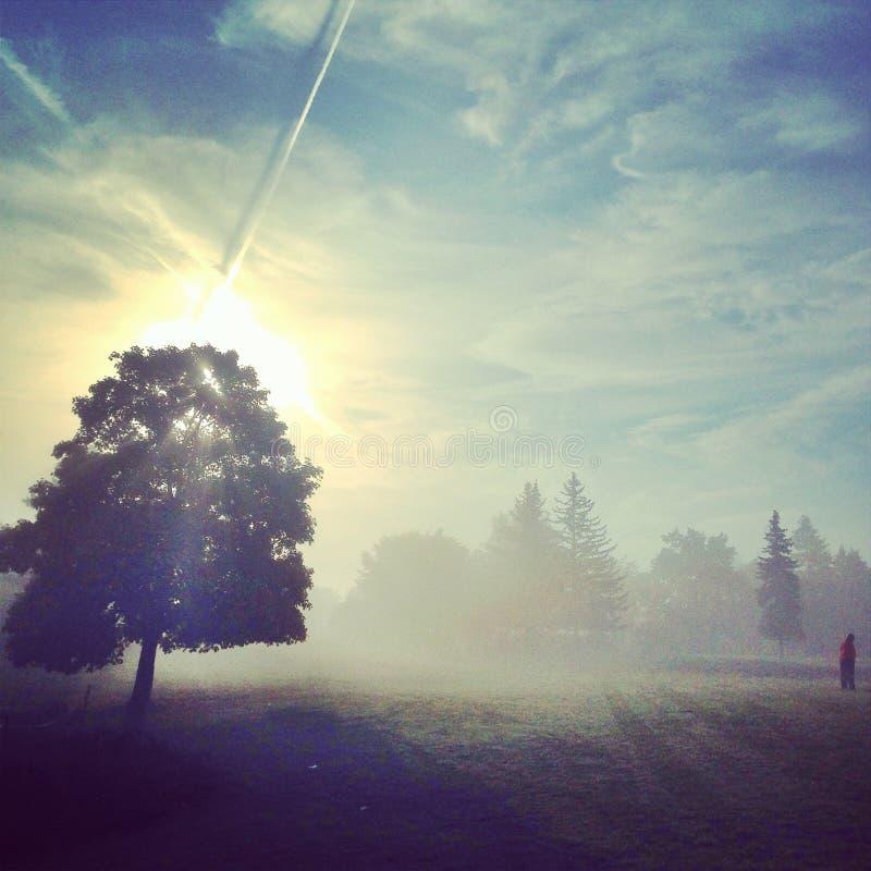 秋天早晨在公园 免版税库存图片