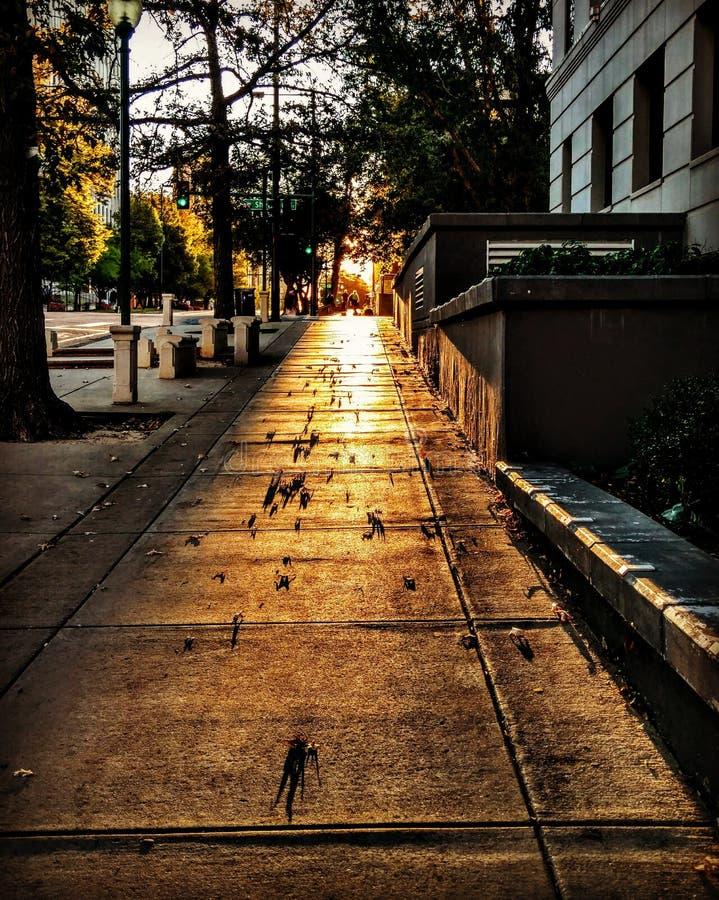 秋天早晨在城市 免版税库存图片