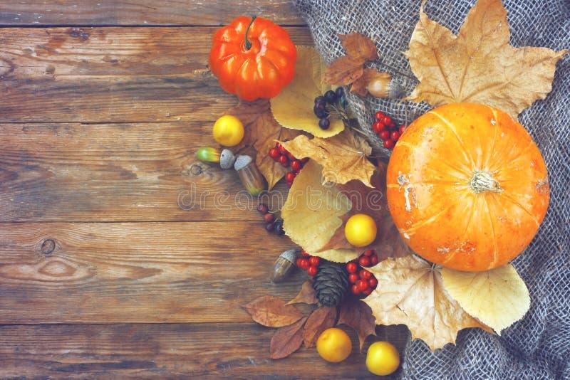 秋天时间背景,南瓜,烘干叶子顶视图 库存照片
